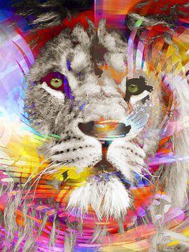 Regenbogen-König von Thom Bouman