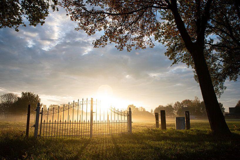 Dromerig mistlandschap op het Brabantse platteland van Chris Heijmans