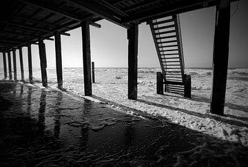 Onder de Beachclub von Harry Kool