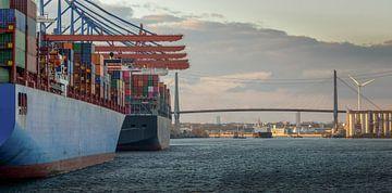 Containerterminal im Hamburger Hafen bei Sonnenuntergang mit Köhlbrandbrücke von Jonas Weinitschke