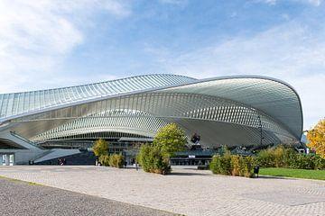 Futuristische treinstation Luik-Guillemins van Wim Stolwerk