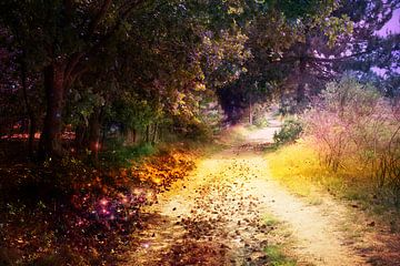 Übernatürlicher bunter Waldweg von Carin Klabbers