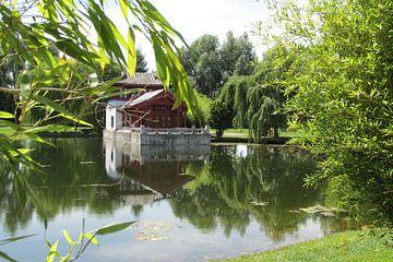 Japanse tuin von Ad Hoeks