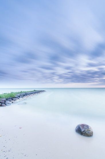 Blauwe uurtje IJsselmeer