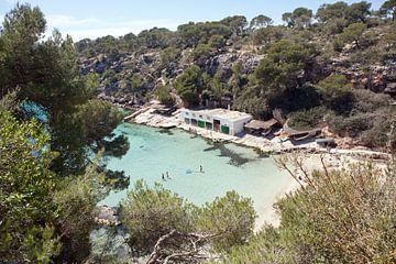 Mallorca van t.ART