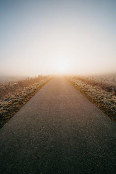 Middelburg : un lever de soleil froid 4 sur Andy Troy