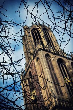 De Utrechtse Dom bekeken door kale wintertakken van De Utrechtse Grachten