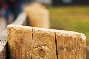 Clôture à poteaux en bois sur Agnes Meijer