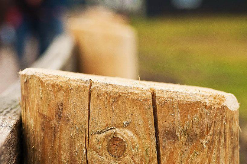 Holzpfahlzaun von Agnes Meijer