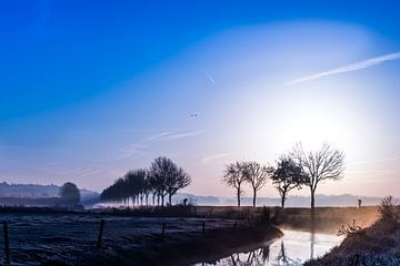 Cold winter sun von Wouter Cornelissen