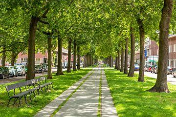 Breda - Belcrum Speelhuislaan von I Love Breda