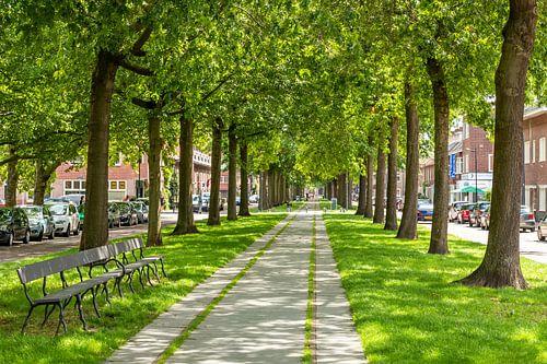 Breda - Belcrum Speelhuislaan
