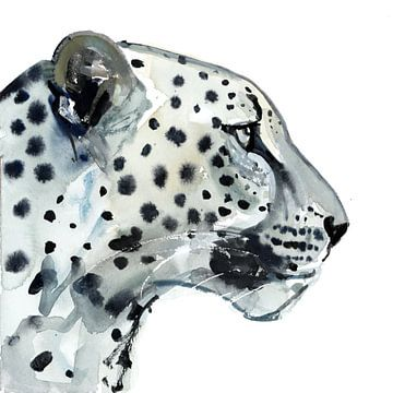 Luipaard op focus van Mark Adlington