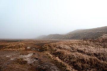 Natuurpark de Slufter gehuld in de mist IV | Een reis over Waddeneiland Texel von Roos Maryne - Natuur fotografie