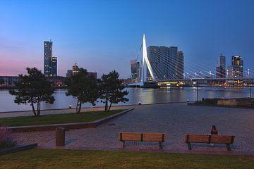 Blick auf die Erasmusbrücke Rotterdam von Charlene van Koesveld