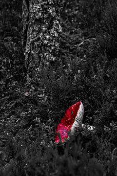 Rot. Weiß. Schwarz. von Twan van Vugt