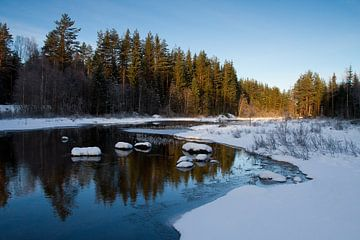 Winter Zweden van Erwin Stevens