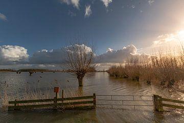 La marée haute sur le fleuve sur Arie Jan van Termeij