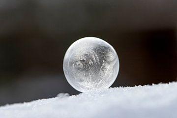 Gefrorene Blase von Tanja van Beuningen