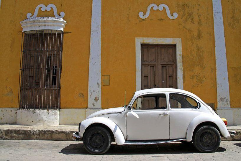Kever in Mexico van Antwan Janssen