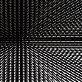 Eenvoud in symmetrie van W J Kok