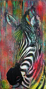 Zebra-Farben von Kathleen Artist Fine Art