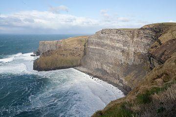 Klippen von Moher, Irland von Kees van Dun