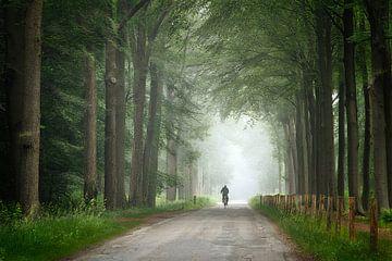 De eenzame fietser van Jos Erkamp