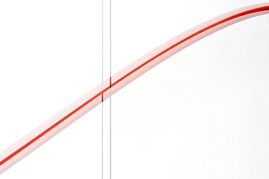 Red lines 1 van Cor Ritmeester
