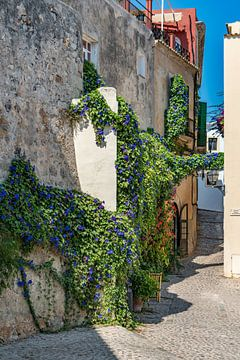 Ibiza-stad Dalt Vila steegje met bloemen van Jan van Suilichem