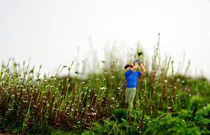Moos-Golfer van