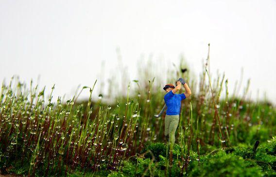 Moos-Golfer van Ulrike Schopp