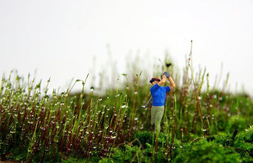 Moos-Golfer von Ulrike Schopp