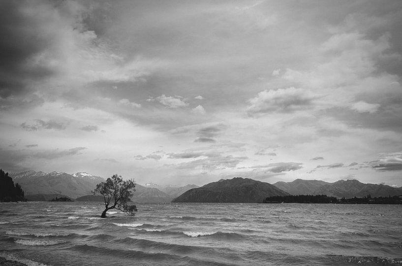 Het meer van Wanaka van Jasper van der Meij