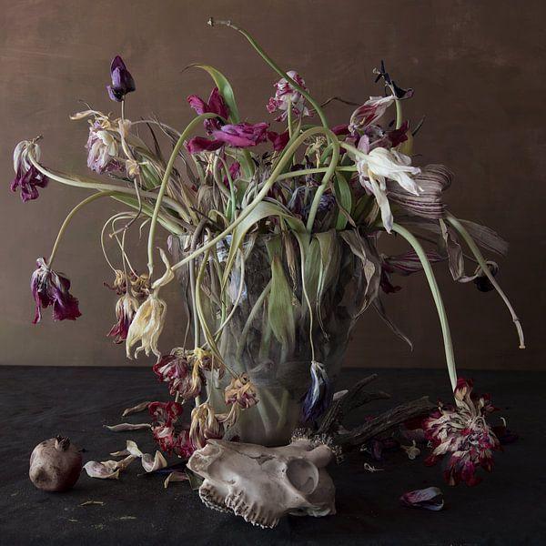 Memento mori van Marion Kraus