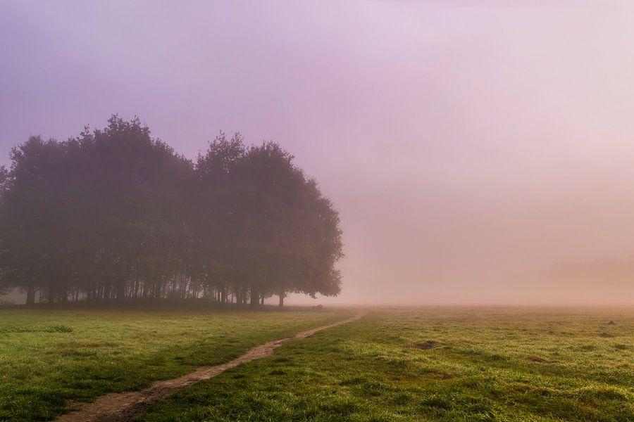 Misty morning van Joost Lagerweij