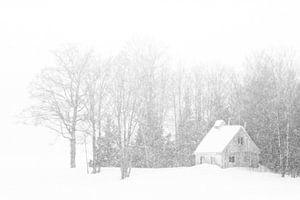 Bordée de Neige