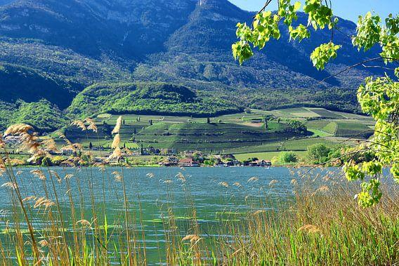 Lake Caldaro