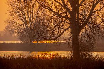Landschap 'Langs de Maas' van Willy Sengers