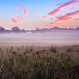 Nebliger Morgen in den Dünen von Richard Guijt Photography