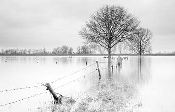 Hochwasser 2 von Hans van der Grient