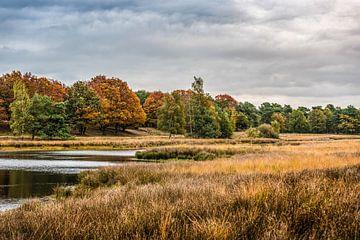 Herbstliche Landschaft von Bas Fransen