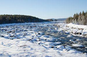 Stromend water door besneeuwd Zweeds Lapland