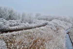 Het pad door de sneeuw van