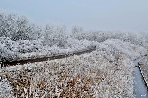 Het pad door de sneeuw von Arie  van Duijn