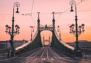 Vrijheidsbrug bij zonsopgang van