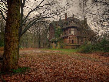 Chateau Nottebohm von Jan Plukkel
