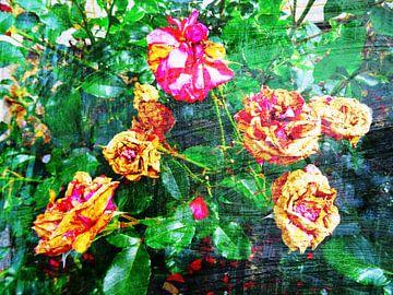 FlowerPower Fantasy 038 van MoArt (Maurice Heuts)