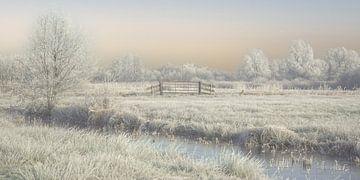 winterlicht in de wieden van Annie Keizer