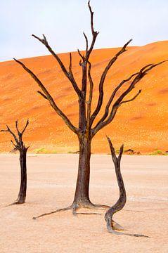 Verticale kunst in de woestijn... von Aisja Aalbers